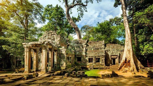 Копия medium_siem-reap-angkor-wat-cambodia