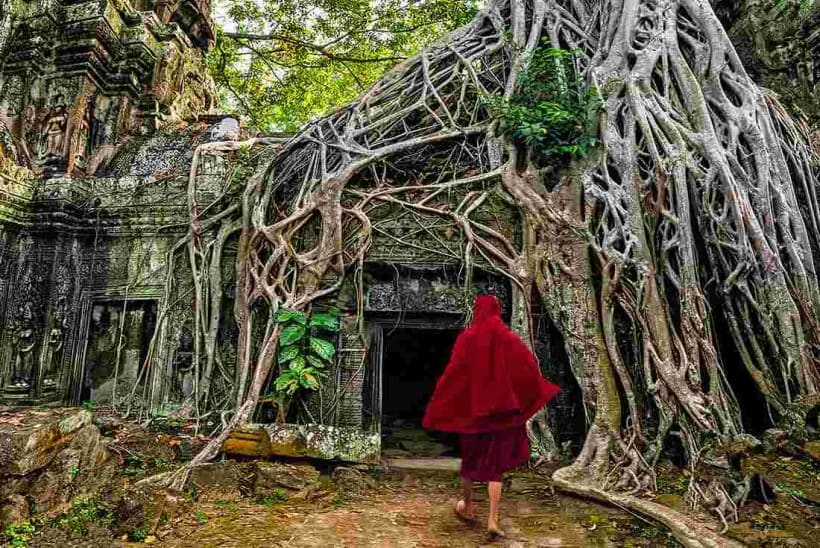 cambodia-angkor-wat-buddhist-monk-jungle