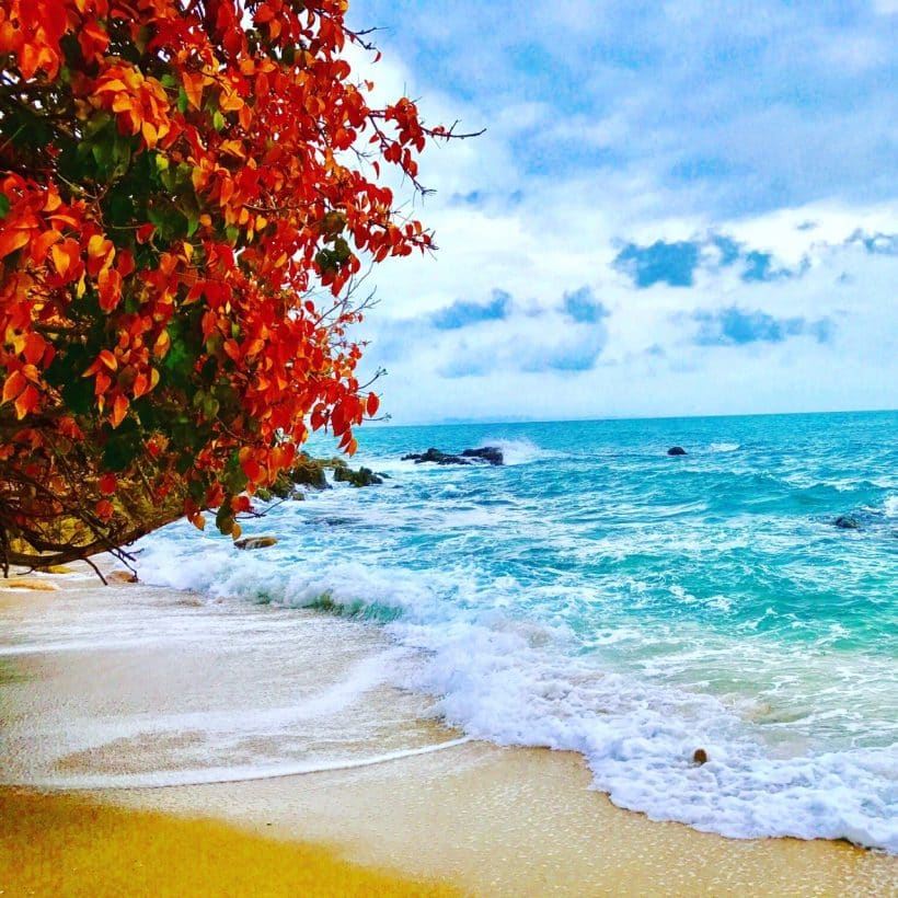 Тайские Мальдивы_181208_0079